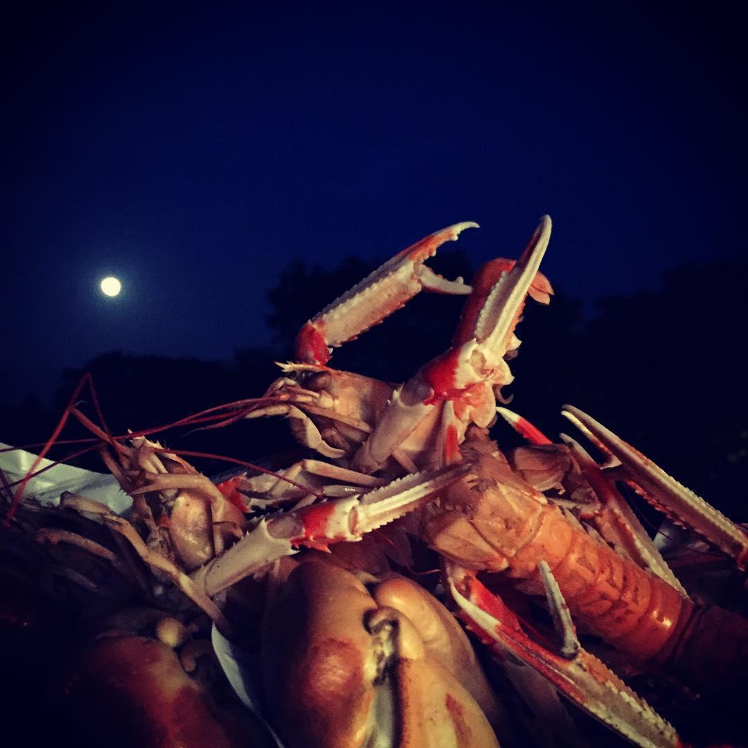 Orgie de fruits de mer au clair de lune! avececlairssurlaplagehellip