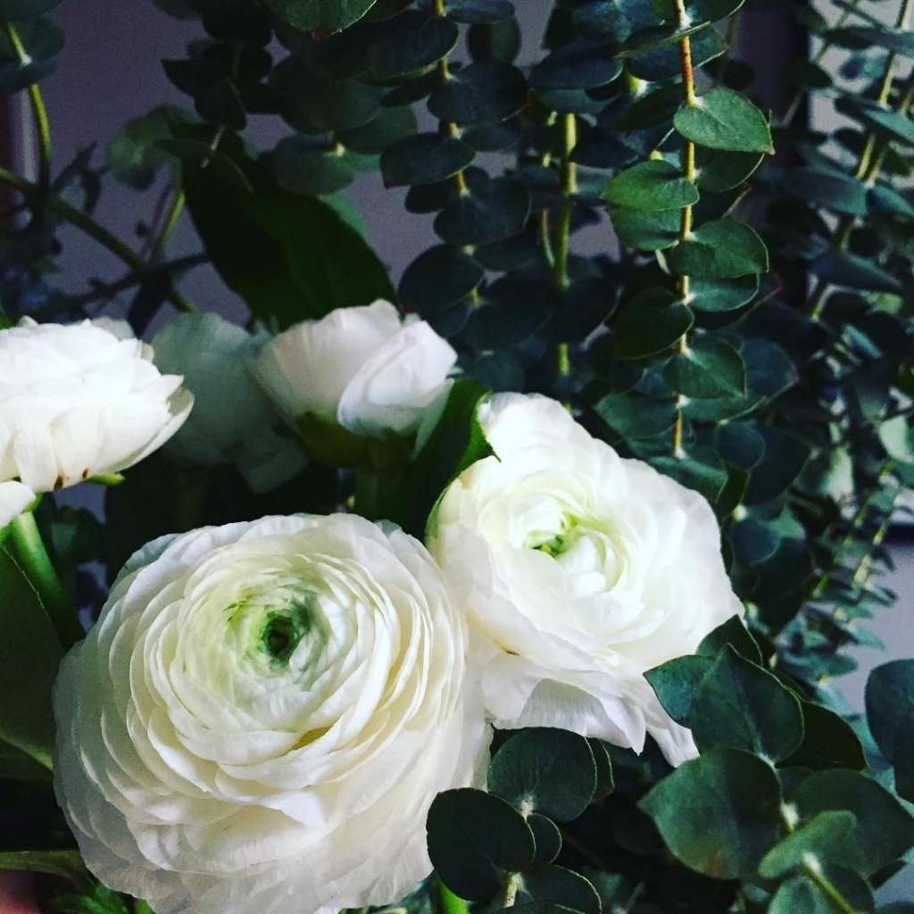 Renoncules & eucalyptus le parfait dernier bouquet du marché de l'année #lebouquetdumarché